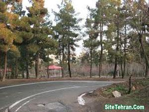 Forest-Park-Tehran-Sorkhehesar-www.sitetehran.ir-01