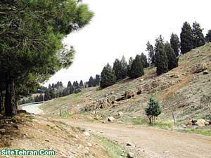 Forest-Park-Tehran-Sorkhehesar-www.sitetehran.ir-04