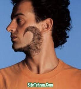 Photo-Beard-2014-sitetehran.com-02