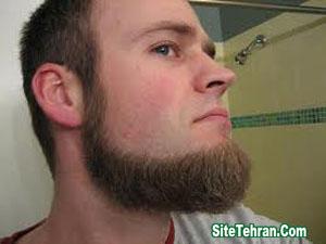 Photo-Beard-2014-sitetehran.com-03