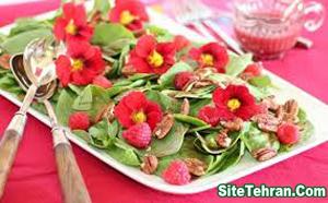Salad-decoration-sitetehran.com-03