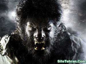 Scary-Photos-sitetehran.com-02