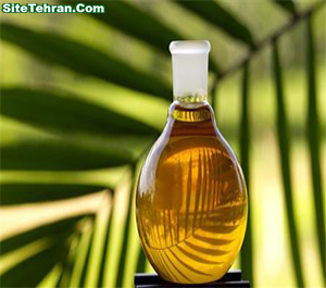 Palm-oil-sitetehran-com