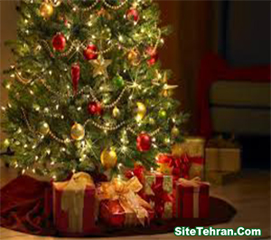Birth-Prophet-Jesus-sitetehran-com-07